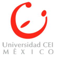 Universidad Centro de Estudios Intensivos CEI México